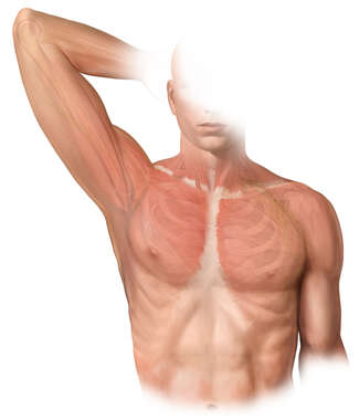 Axillary region (male)