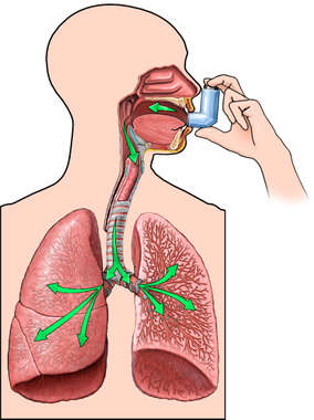 Mechanism of Inhalation Using an Inhaler