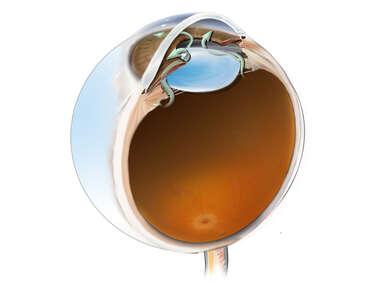 Aqueous Flow from the Posterior to Anterior Chamber of the Eye