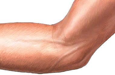 Medial Elbow