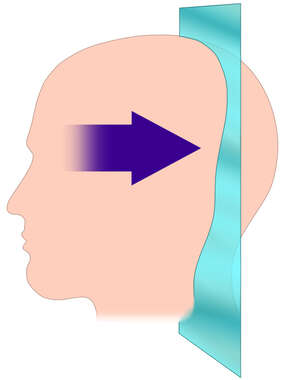 Head with Orientation for Coronal Cut-away Section