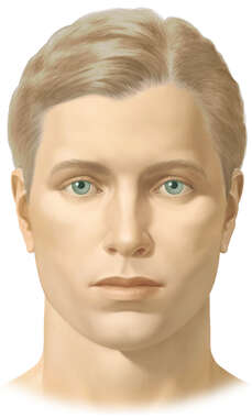 Male Face